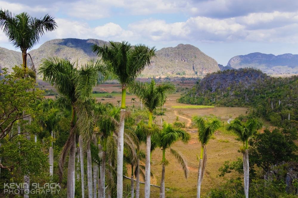 Road Trip - Pinar del Rio #50