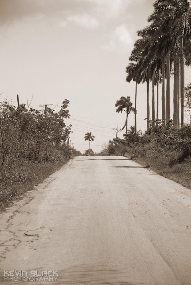 Las Vistas - Part 3 #53