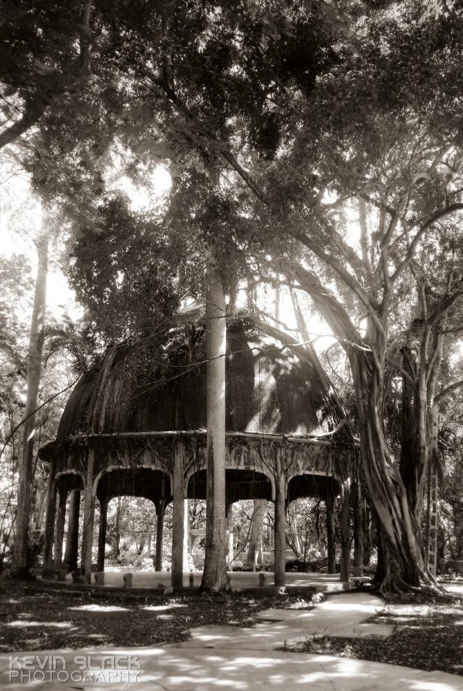 Las Vistas - Part 3 #61